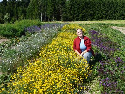 Saatgut Vielfalt Liebe Pflanzenfreunde